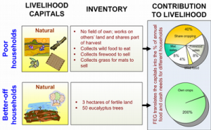 foodsecurity_livlihoods